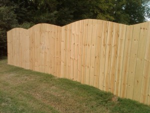 Wood Fence Convex